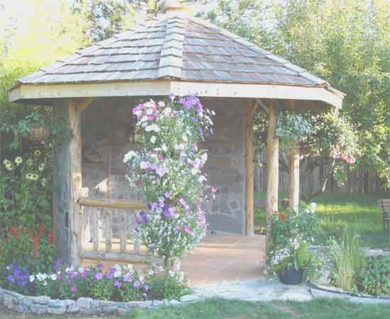Log Frame Gazebo